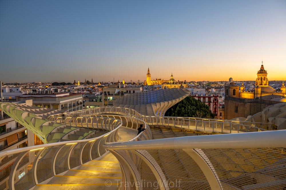 metropol parasol at night
