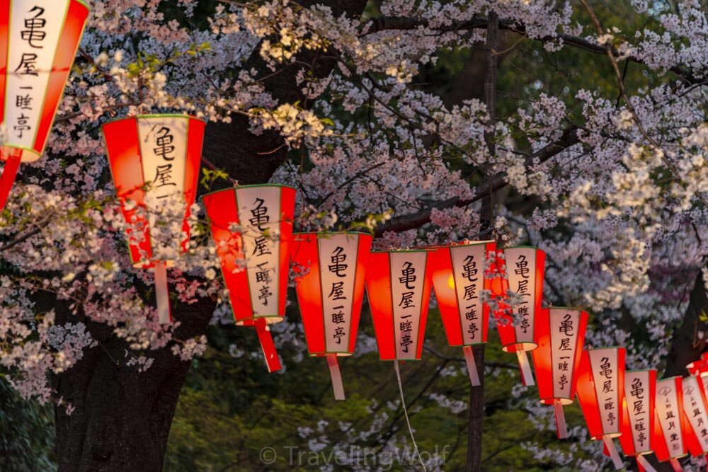 Japan - The Ultimate Four Week Round Trip for Photographers